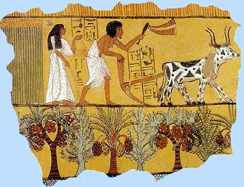 the earliest record of vegetarianism in ancient history Ancient origins deliberate avoidance in later centuries the history of vegetarianism in the indic and vegetarians of the early 19th century usually condemned.